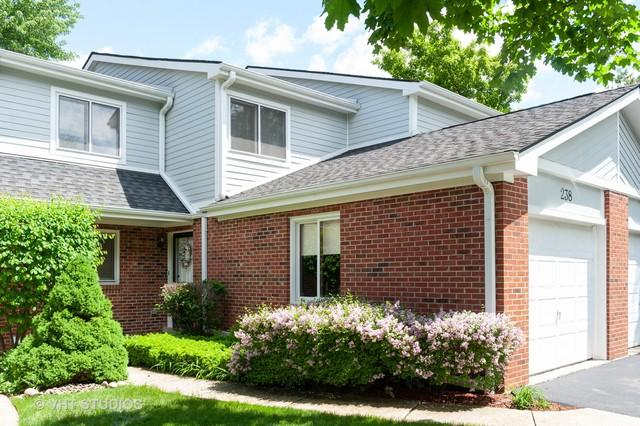 238 W Golfview Terrace, Palatine, IL 60067 (MLS #10451485) :: Ryan Dallas Real Estate
