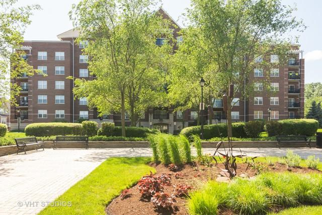 470 W Mahogany Court #604, Palatine, IL 60067 (MLS #10451658) :: Baz Realty Network | Keller Williams Elite