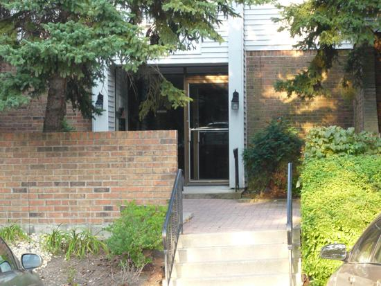 7421 Blackburn Avenue #201, Downers Grove, IL 60516 (MLS #10451736) :: Berkshire Hathaway HomeServices Snyder Real Estate