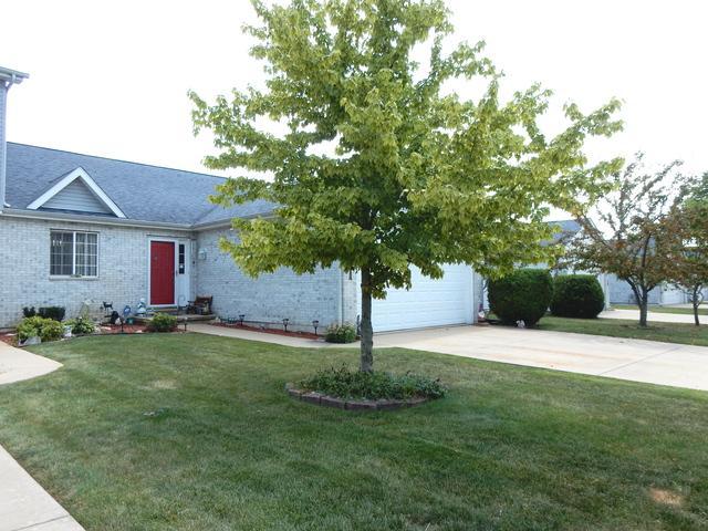 233 N Harbor Landing, Braidwood, IL 60408 (MLS #10452036) :: Berkshire Hathaway HomeServices Snyder Real Estate