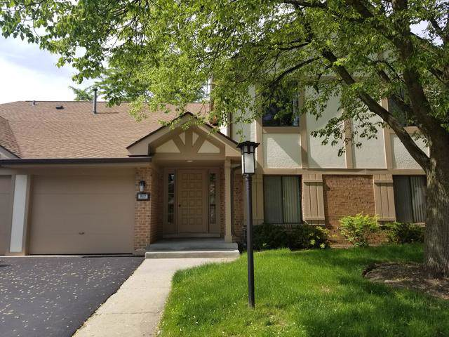912 Knottingham Drive 2A, Schaumburg, IL 60193 (MLS #10452270) :: The Wexler Group at Keller Williams Preferred Realty