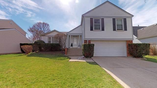 1311 Brandywyn Lane, Buffalo Grove, IL 60089 (MLS #10452348) :: The Wexler Group at Keller Williams Preferred Realty