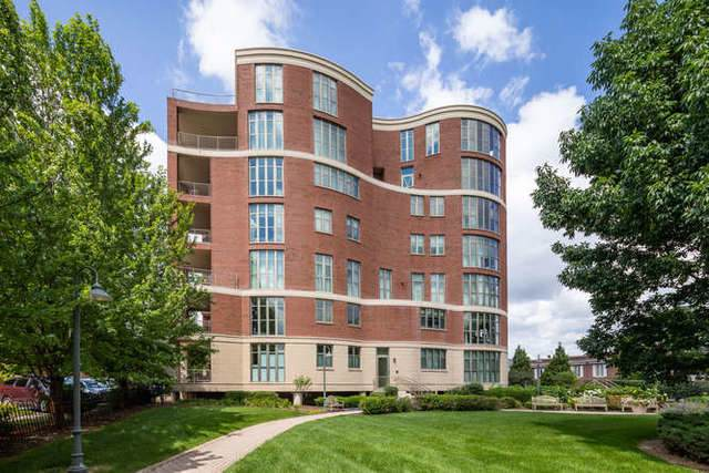 520 S Washington Street #203, Naperville, IL 60540 (MLS #10452724) :: The Perotti Group | Compass Real Estate