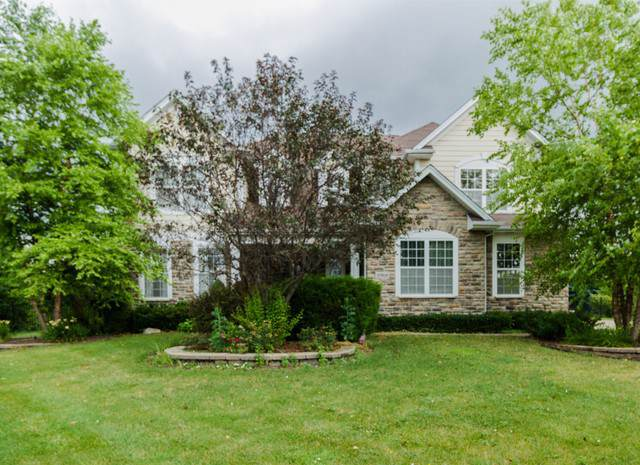 8968 Liatris Drive, Frankfort, IL 60423 (MLS #10452834) :: The Perotti Group | Compass Real Estate