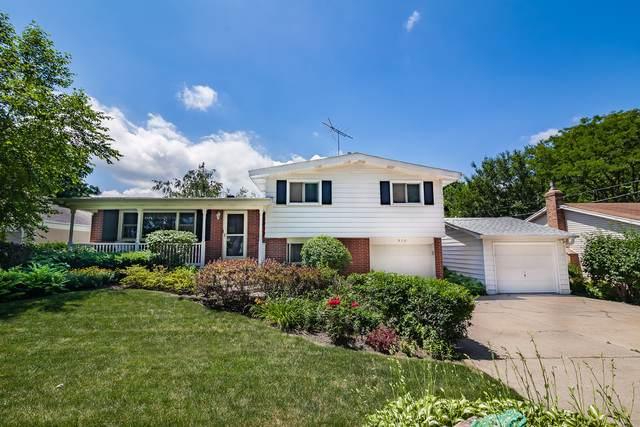 910 Granville Avenue, Mundelein, IL 60060 (MLS #10452904) :: Angela Walker Homes Real Estate Group