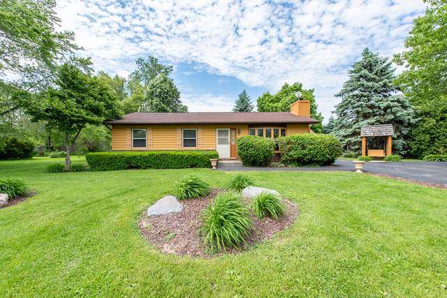 10162 W Pickford Avenue, Beach Park, IL 60099 (MLS #10452957) :: Berkshire Hathaway HomeServices Snyder Real Estate