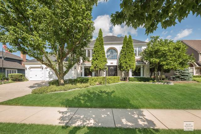 1478 Frenchmans Bend Drive, Naperville, IL 60564 (MLS #10453141) :: Berkshire Hathaway HomeServices Snyder Real Estate