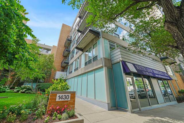 1430 S Michigan Avenue #210, Chicago, IL 60605 (MLS #10453260) :: Baz Realty Network | Keller Williams Elite