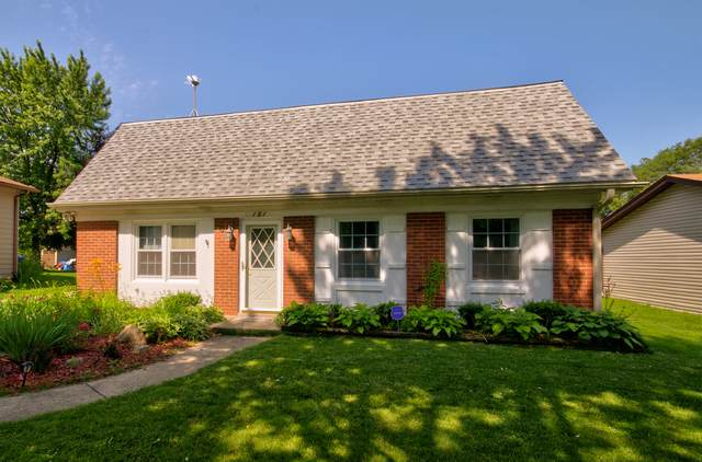 181 Plainview Drive, Bolingbrook, IL 60440 (MLS #10453293) :: Berkshire Hathaway HomeServices Snyder Real Estate