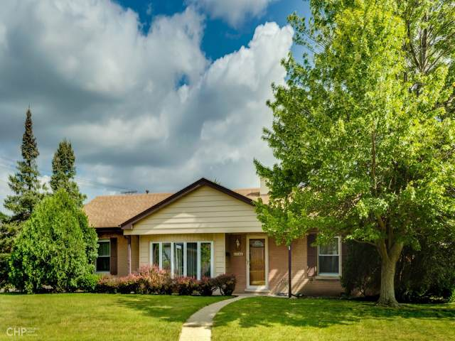 8146 W Charmaine Road, Norridge, IL 60706 (MLS #10453301) :: Berkshire Hathaway HomeServices Snyder Real Estate