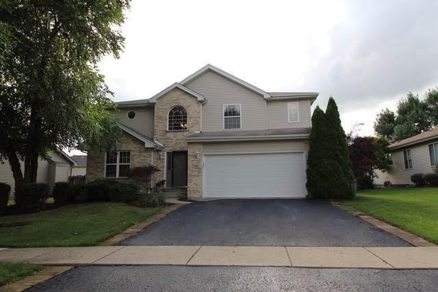 618 Wild Indigo Avenue, Romeoville, IL 60446 (MLS #10453321) :: Berkshire Hathaway HomeServices Snyder Real Estate