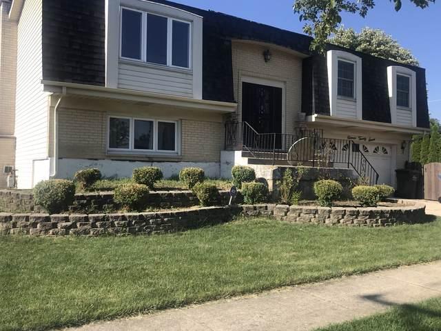 1127 S Lavergne Drive, Mount Prospect, IL 60056 (MLS #10453600) :: Baz Realty Network | Keller Williams Elite