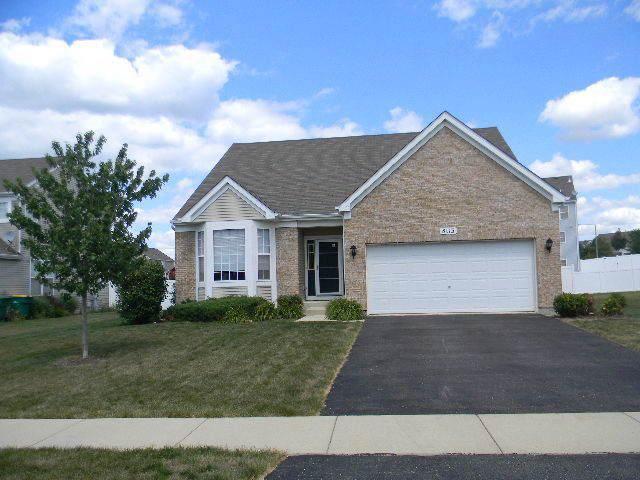 8113 Bluestem Avenue, Joliet, IL 60431 (MLS #10453628) :: Ryan Dallas Real Estate