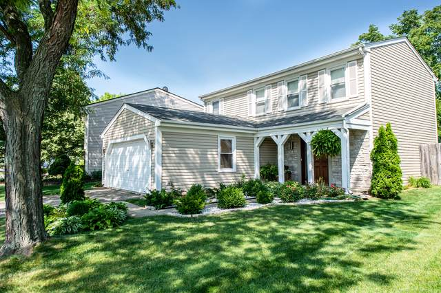 608 Stafford Drive, Roselle, IL 60172 (MLS #10453684) :: Berkshire Hathaway HomeServices Snyder Real Estate