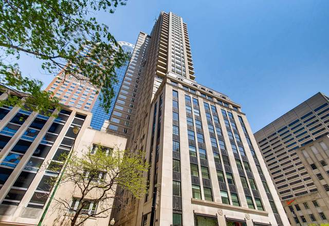 118 E Erie Street 16D, Chicago, IL 60611 (MLS #10453715) :: Property Consultants Realty