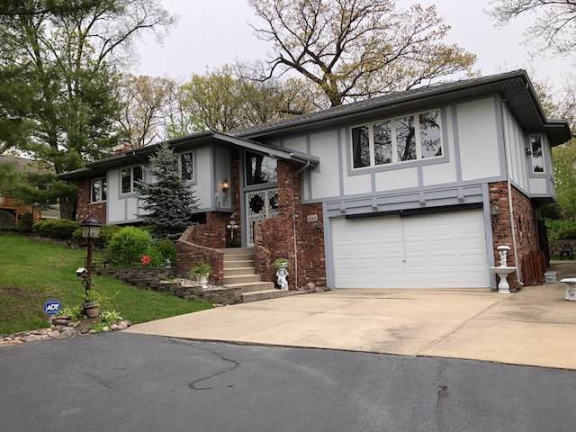 8360 W 100th Place, Palos Hills, IL 60465 (MLS #10453740) :: The Perotti Group | Compass Real Estate