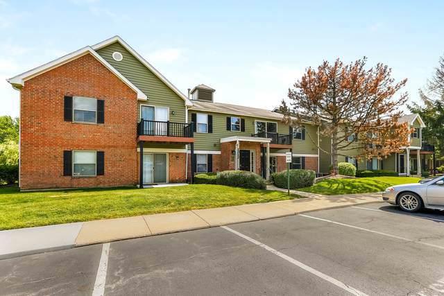 1312 Mc Dowell Road #103, Naperville, IL 60563 (MLS #10453801) :: Baz Realty Network   Keller Williams Elite