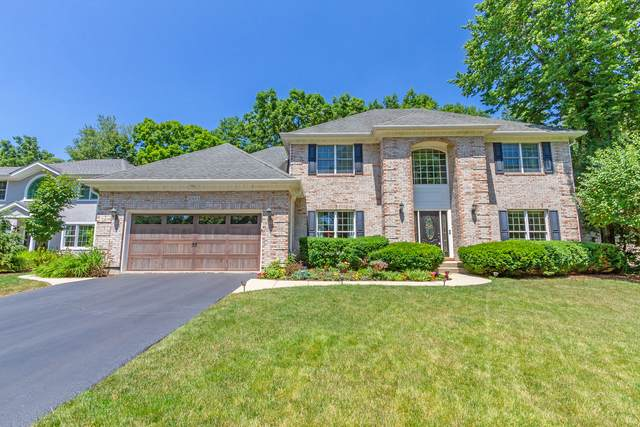 1003 Wildrose Springs Drive, St. Charles, IL 60174 (MLS #10453838) :: Ryan Dallas Real Estate