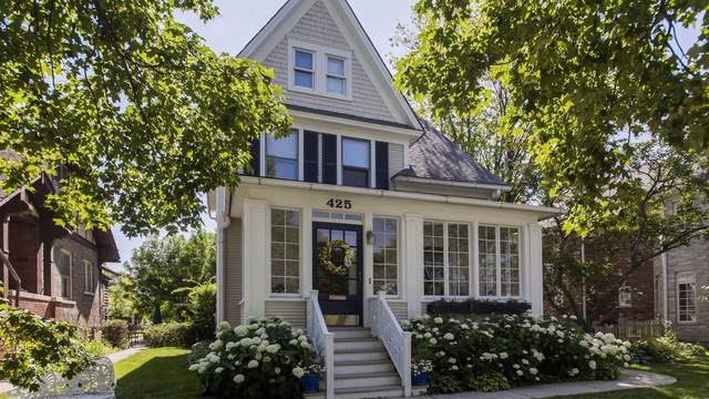 425 N Meacham Avenue, Park Ridge, IL 60068 (MLS #10453845) :: Ryan Dallas Real Estate
