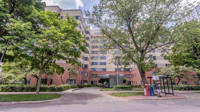5048 N Marine Drive B2, Chicago, IL 60640 (MLS #10453875) :: The Perotti Group | Compass Real Estate