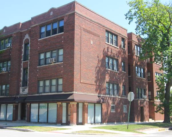 421 Harrison Street C, Oak Park, IL 60304 (MLS #10454243) :: The Perotti Group | Compass Real Estate