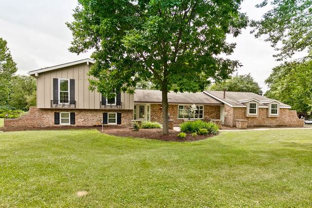 19 Golfview Lane, Lake Barrington, IL 60010 (MLS #10454432) :: Ryan Dallas Real Estate