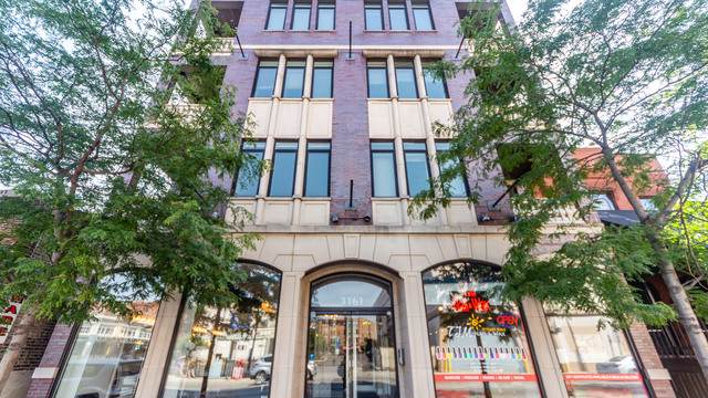 3161 N Halsted Street #201, Chicago, IL 60657 (MLS #10454459) :: John Lyons Real Estate