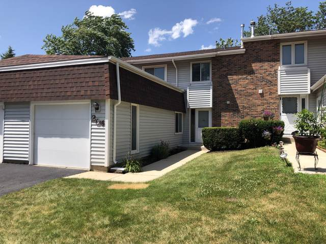 204 Walker Drive, Bolingbrook, IL 60440 (MLS #10454467) :: Property Consultants Realty