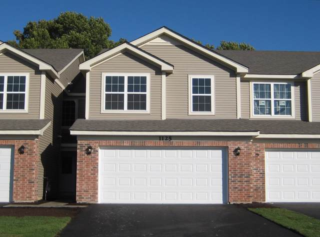 1282 Prairie View Parkway, Cary, IL 60013 (MLS #10454469) :: Property Consultants Realty