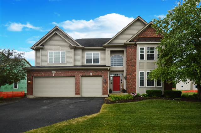 25123 W Zoumar Drive, Plainfield, IL 60586 (MLS #10454491) :: Property Consultants Realty