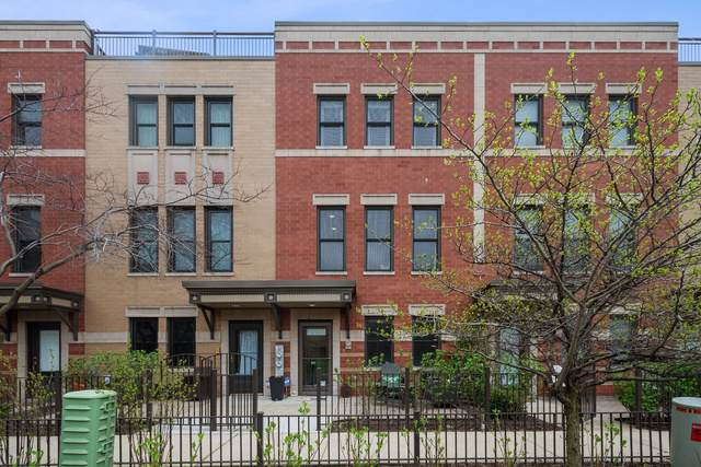 1009 N Kingsbury Street, Chicago, IL 60610 (MLS #10454523) :: Property Consultants Realty