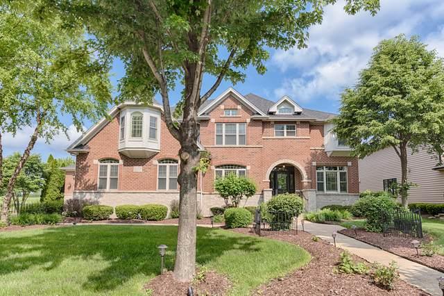 1229 Bush Boulevard, Bolingbrook, IL 60490 (MLS #10454878) :: Baz Realty Network   Keller Williams Elite