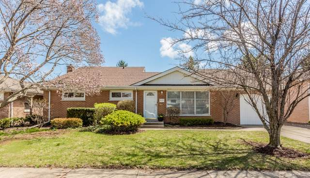 9125 Mango Avenue, Morton Grove, IL 60053 (MLS #10454919) :: Helen Oliveri Real Estate