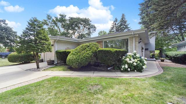 206 S Mount Prospect Road, Mount Prospect, IL 60056 (MLS #10454929) :: The Perotti Group | Compass Real Estate