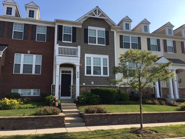 806 E Wing Street, Arlington Heights, IL 60004 (MLS #10455110) :: Berkshire Hathaway HomeServices Snyder Real Estate