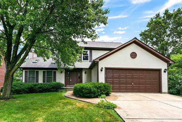 2772 Rolling Meadows Drive, Naperville, IL 60564 (MLS #10455418) :: The Wexler Group at Keller Williams Preferred Realty