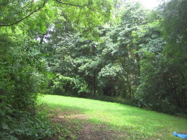 113 Prairie Drive, Essex, IL 60935 (MLS #10455529) :: Jacqui Miller Homes
