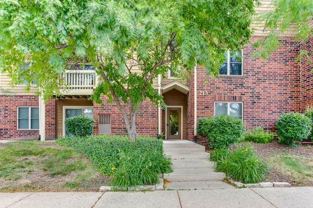 213 Glengarry Drive #110, Bloomingdale, IL 60108 (MLS #10455619) :: Berkshire Hathaway HomeServices Snyder Real Estate