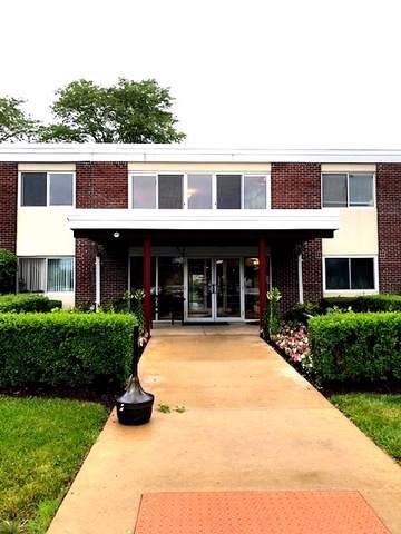 100 Deborah Lane 9A, Wheeling, IL 60090 (MLS #10455994) :: Helen Oliveri Real Estate
