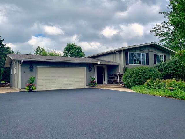 9516 Beech Avenue, Crystal Lake, IL 60014 (MLS #10456059) :: Baz Realty Network | Keller Williams Elite