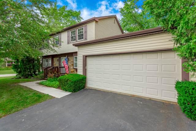 221 Stonegate Road, Buffalo Grove, IL 60089 (MLS #10456086) :: Helen Oliveri Real Estate