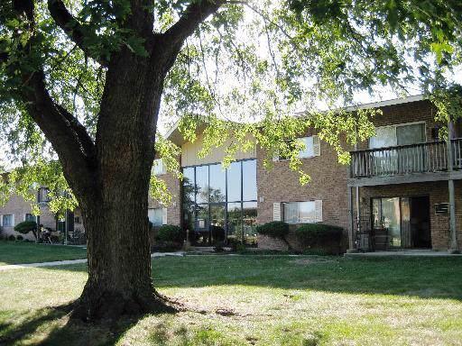 7410 Brookdale Drive #114, Darien, IL 60561 (MLS #10456289) :: The Dena Furlow Team - Keller Williams Realty
