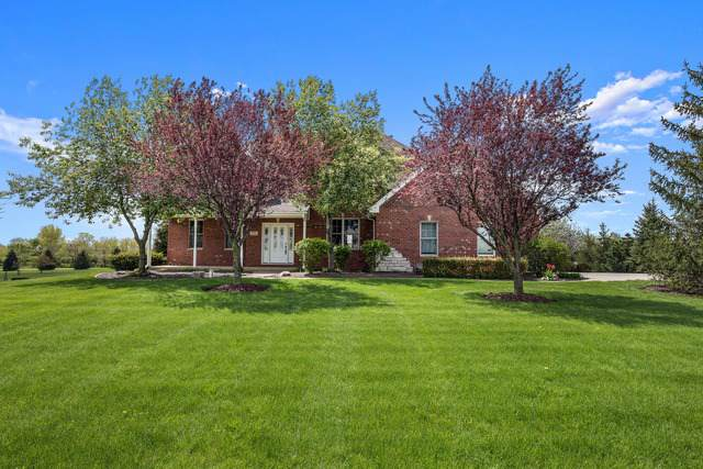 8701 W Blackthorne Way, Frankfort, IL 60423 (MLS #10456325) :: Ani Real Estate