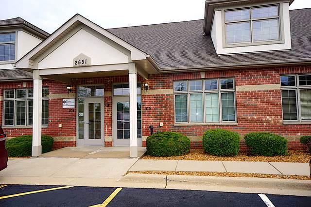2551 Division Street #103, Joliet, IL 60435 (MLS #10456476) :: Lewke Partners