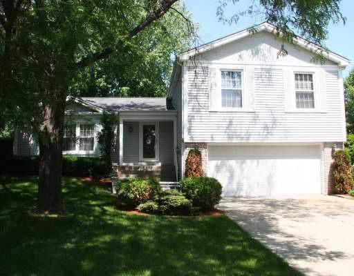 1180 Brandywyn Lane, Buffalo Grove, IL 60089 (MLS #10456523) :: Helen Oliveri Real Estate