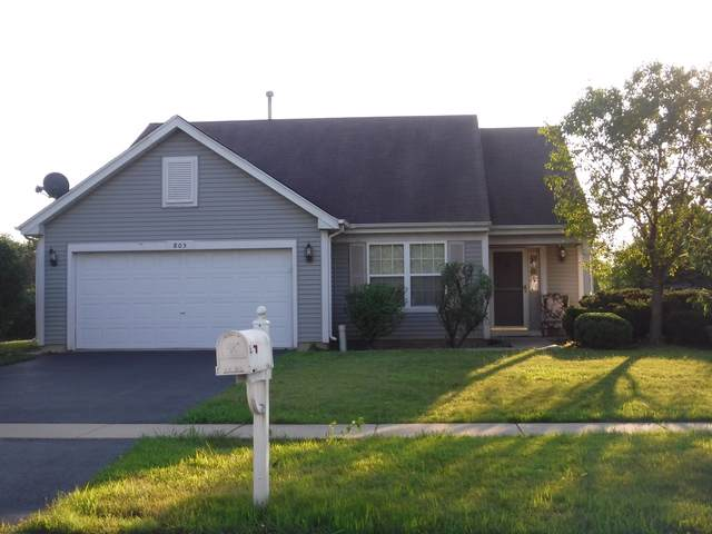 805 Blandford Avenue, New Lenox, IL 60451 (MLS #10456738) :: The Dena Furlow Team - Keller Williams Realty