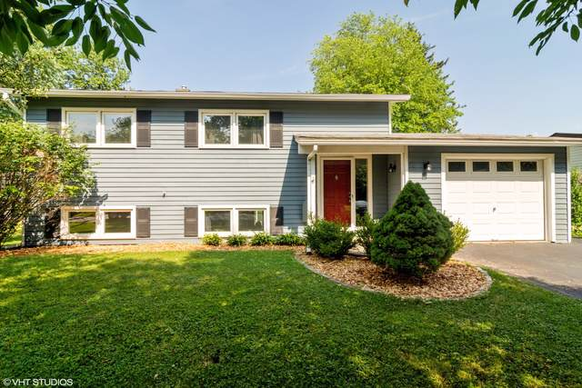 2240 Forest Avenue, Rolling Meadows, IL 60008 (MLS #10456791) :: Touchstone Group