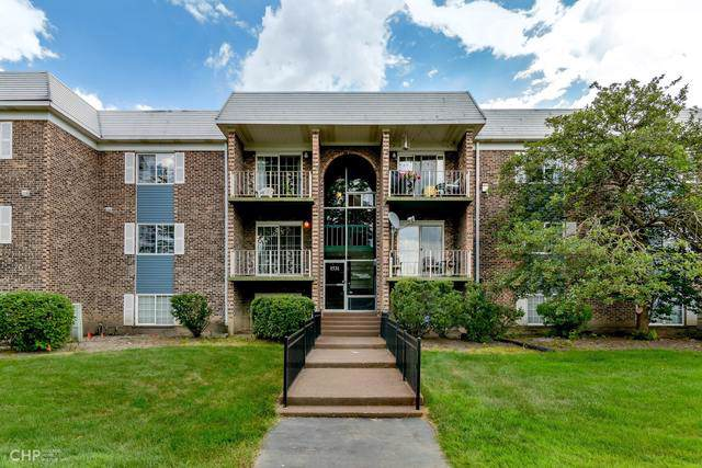 1531 N Windsor Drive #210, Arlington Heights, IL 60004 (MLS #10456808) :: Berkshire Hathaway HomeServices Snyder Real Estate