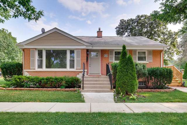 222 N Maple Street, Mount Prospect, IL 60056 (MLS #10456886) :: Touchstone Group