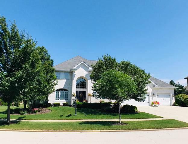 22973 Lakeview Estates Boulevard, Frankfort, IL 60423 (MLS #10456939) :: John Lyons Real Estate